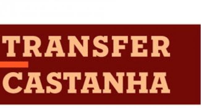 Pragas e Doenças do Castanheiro - TransferCastanha